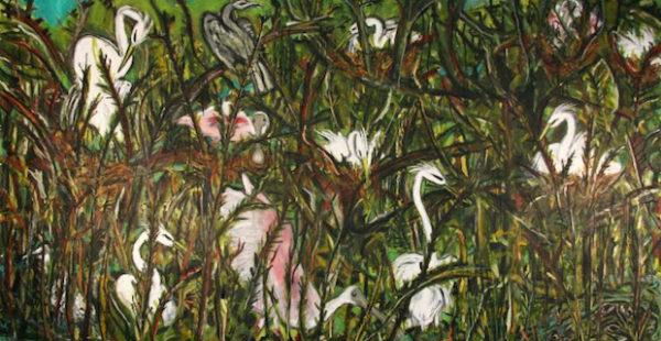 Frank X. Tolbert2: The Texas Bird Project