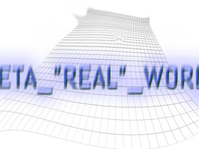 Meta real world