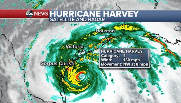 harvey image
