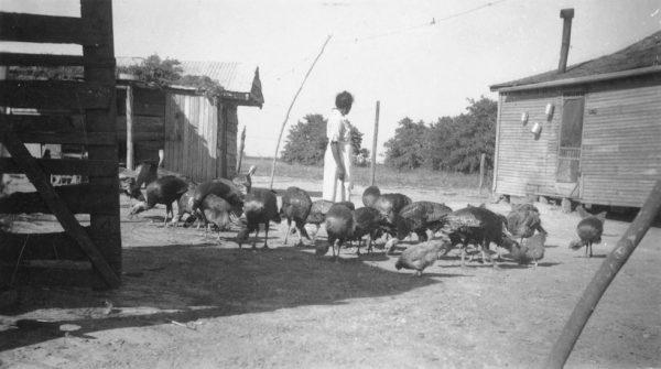 [Woman with Turkeys]