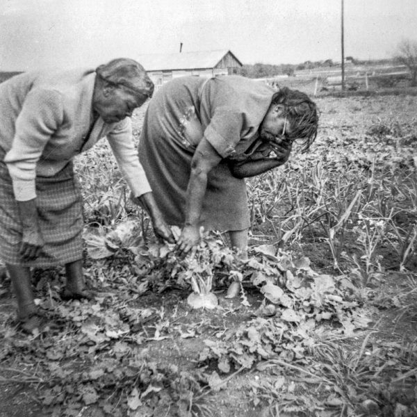 [Women Gardening]