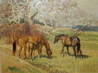 Robert Lougheed: Horses of the World
