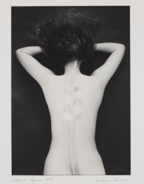 Debora Hunter's Floral Spine