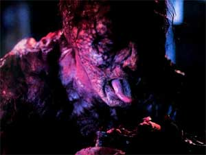 Image still from The Fly, 1986, directed by David Cronenberg.