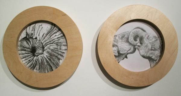 "Michelle Monseau's ""Elephant in the Room"""