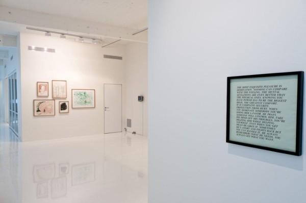 Installation View, Raymond Pettibon, Jenny Holzer