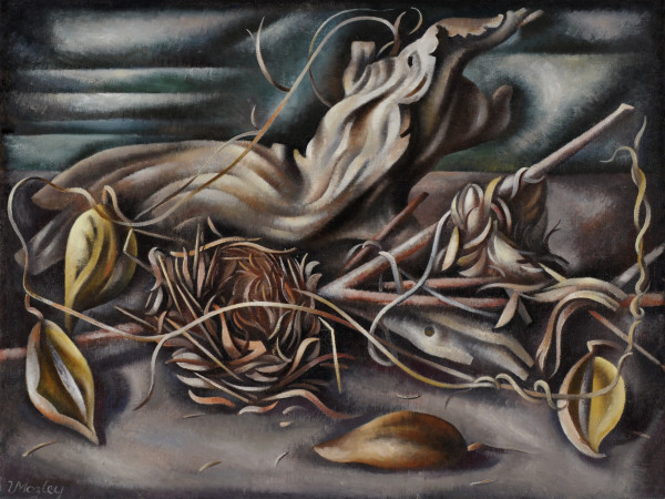 Loren Mozley, Driftwood, Birdsnests, and Milkweed Pods, 1943–44, Oil on canvas, Overall: 18 1/2 x 24 in., Private Collection, Dallas
