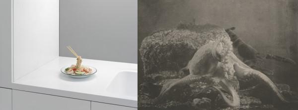 Adam Schreiber, Rirkrit Tiravanija, Untitled, 1999, 2012 and Paul Louis Marie Fabre-Domergue, Octopus vulgaris, 1899.