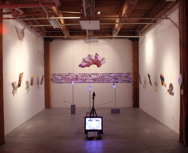 C___ OF THE EYE / C___ OF THE HAND [installation shot], 2012, variable