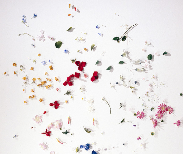 Changing Things (detail), 1997. Silk, plastic, and wire 76 x 148 in.