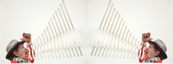 Miguel Ángel Ríos, META (diptych), 2012. Courtesy of the artist and Sicardi Gallery.