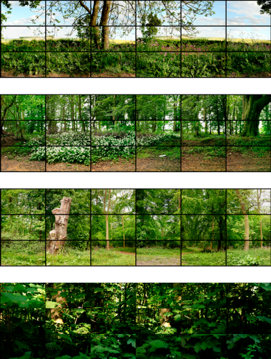 """David Hockney, Seven Yorkshire Landscape Videos, 2011, eighteen digital videos synchronized and presented on eighteen 55"""" NEC screens to comprise a single artwork, 27 x 47 7/8 inches each, 81 x 287 inches overall, duration: 12 minutes, 9 seconds, Courtesy of the artist. From top to bottom: May 12th 2011 Rudston to Kilham Road 5pm, May 11th 2011 Woldgate Woods 1:45pm, May 11th 2011 Woldgate12:45pm, and May 25th 2011 Woldgate 8:45am. © David Hockney. All Rights Reserved."""
