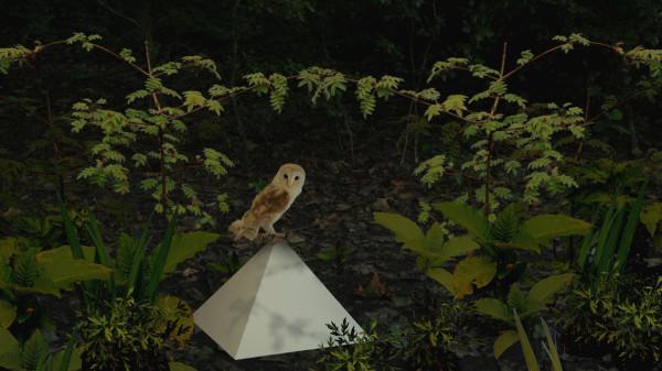 Enclave_Video_Still_Owl