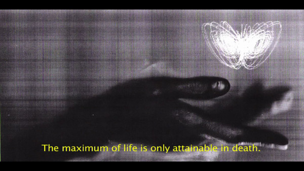 Jenny Vogel, The Beauty of All Things Falling, film still
