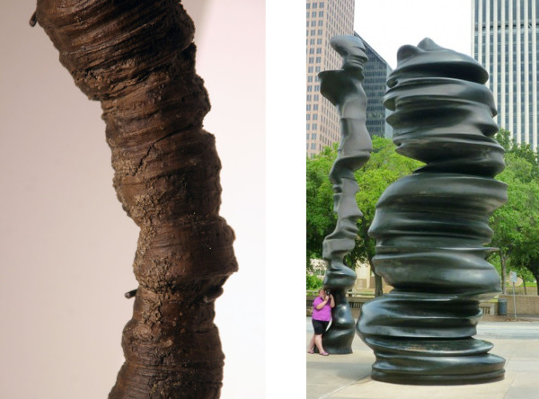 (l) Fossilized coral from the Devonian period, Switzerland (r) Tony Cragg, In Minds, 2001- 2002