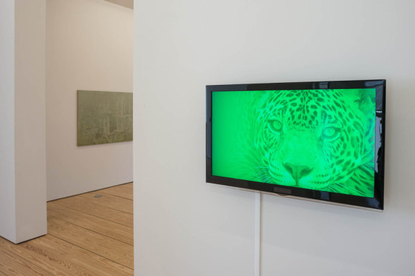Installation view at Sicardi Gallery, Houston