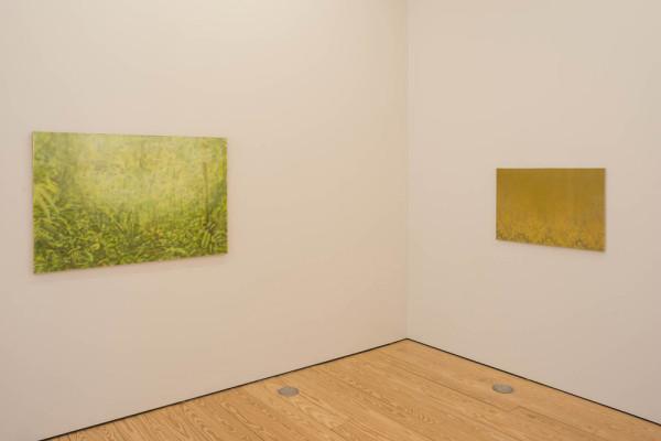 Paintings at sicardi Gallery