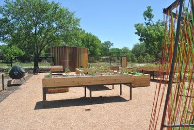 austin garden