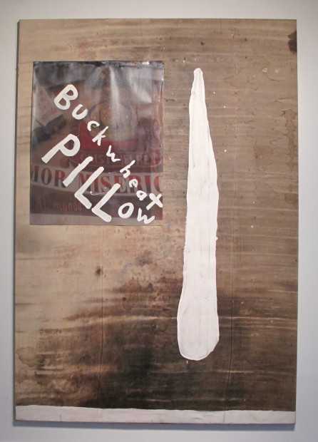 Buckwheat Pillow, 2005. Resin on stained tarp with printed canvas, 156 x 108""