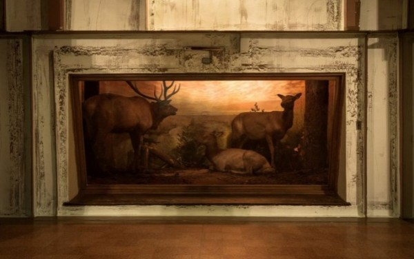 """Carlos Bunga's installation """"Ecosystem"""" won the 2013 Juried Prize. It had the perfect balance of wildlife and conceptual rigor."""