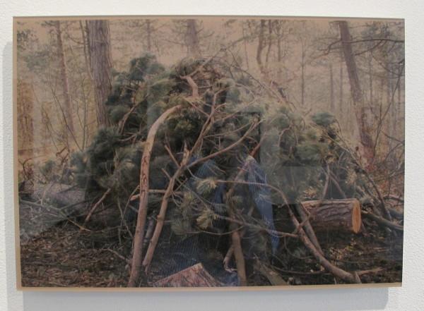 "Mireille Schellhorn, <em>A Pile of Wood #12</em>, 2012 Color C-print, face mounted to colored Plexiglas, 12"" x 16.5"" (pardon the glare)"