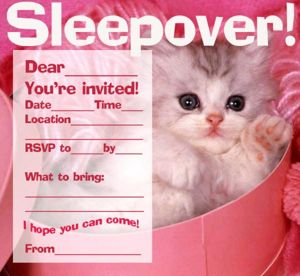 sleepover_cat