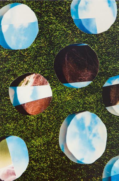 drop-shadow grass, 2015