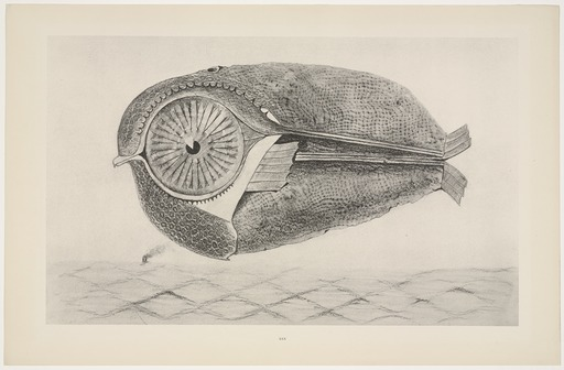 Max Ernst, L'évadé (The Fugitive), 1925. Collotype on paper from a 1925 black crayon frottage, with gouache on paper.