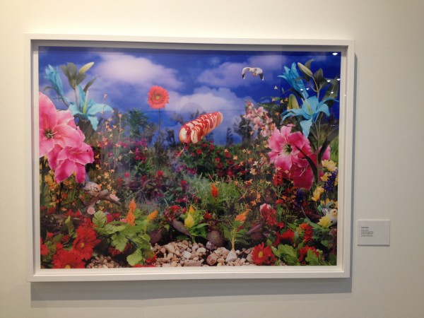 Carlo Zinzi at Houston Center for Photography / FotoFest