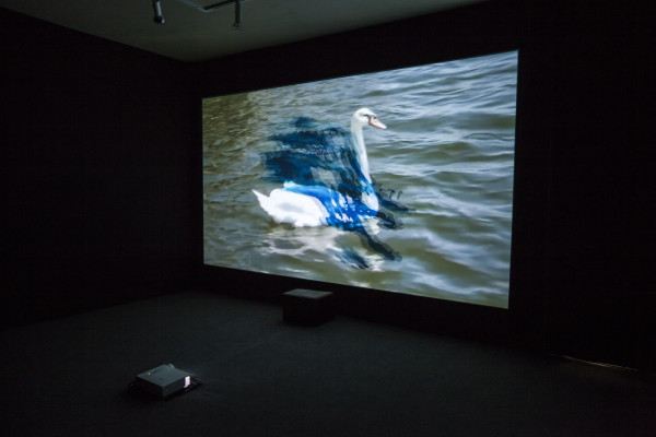Trisha Baga, MS Orlando (still), 2015. Single-channel 3-D video projection, sound.