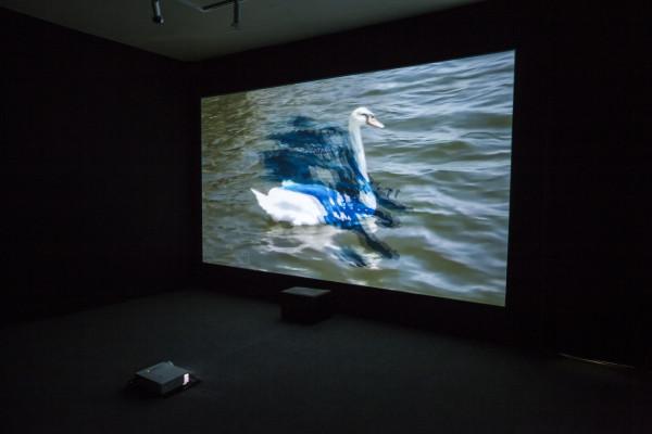 Trisha Baga, MS Orlando (still), 2015. Single-channel 3-D video projection, sound.