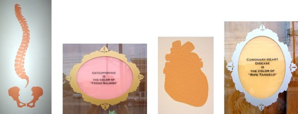 """Osteoporosis is the Color of """"Fresh Salmon"""", 2001, interior house paint matched to damaged part of organ. Osteoporosis is the Color of """"Fresh Salmon"""", 2001, vinyl frame and letters, interior house paint matched to damaged part of organ. Coronary Heart Disease is the Color of """"Ripe Tangelo"""", 2001, interior house paint matched to damaged part of organ. Coronary Heart Disease is the Color of """"Ripe Tangelo"""", 2001, vinyl frame and letters, interior house paint matched to damaged part of organ."""