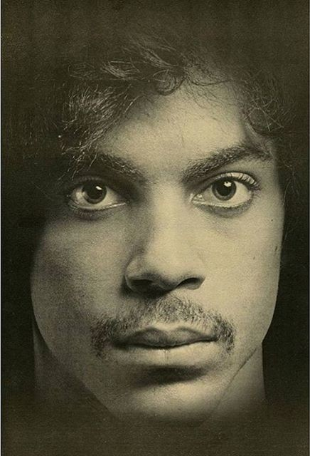 Robert Mapplethorpe photographed Prince for Andy Warhol's Interview magazine in 1980. Photo: courtesy the New Museum, New York via artnet.com.