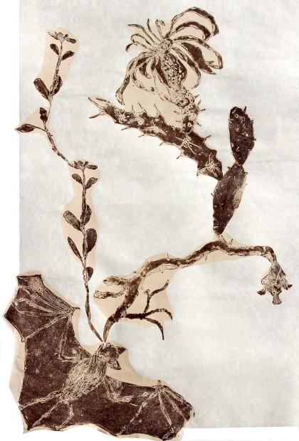 Mersky.First Bat Map