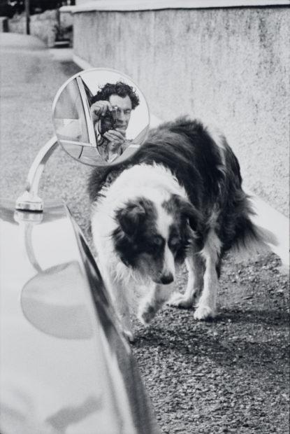 Elliott Erwitt, Midleton, Ireland, 1970. Gelatin silver print. Harry Ransom Center Collection © Elliott Erwitt/Magnum Photos