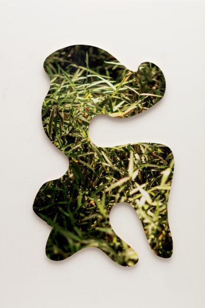 Kevin Todora, Green Dragon