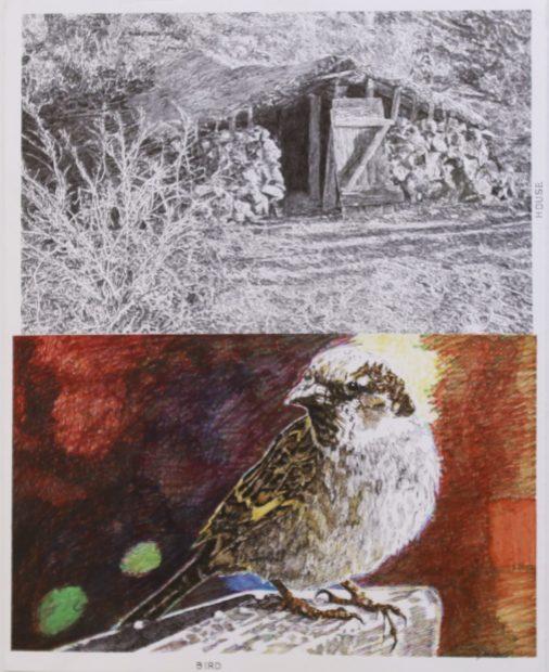 "Birdhouse, Jim Malone, 27 x 23"", Marker and graphite"