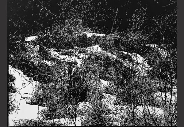 "David Conn, Sussex, 2015, linocut, 27.5""x32.75"""