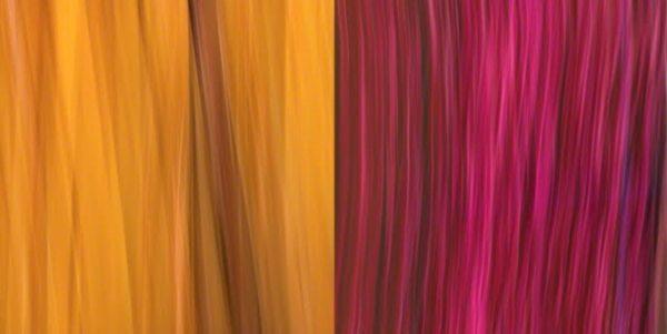 Turmeric y Bougainvillea, 2012, digital print on metal, 18 x 36 in.