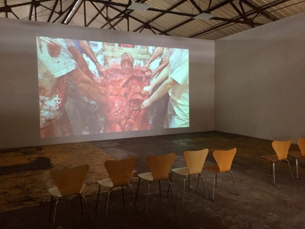Nitsch: video still installation