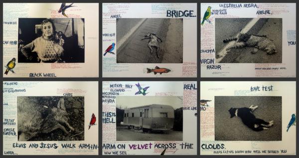 Terry Allen, Positions on the Desert, 1990