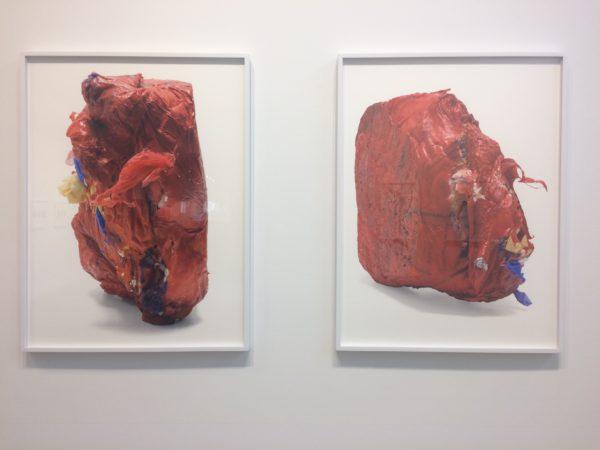 Sarah Sudhoff, Single Use Only: BTU No. 2 & No. 1, archival pigment prints, 2012.