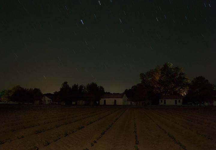 Frogmore Plantation; Concordia Parish, Louisiana; 2014