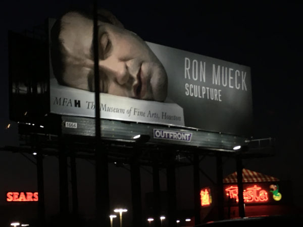 Ron Mueck at The Museum of Fine Arts, Houston