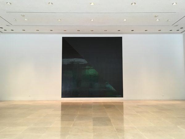 Sol Lewitt at Rice Gallery