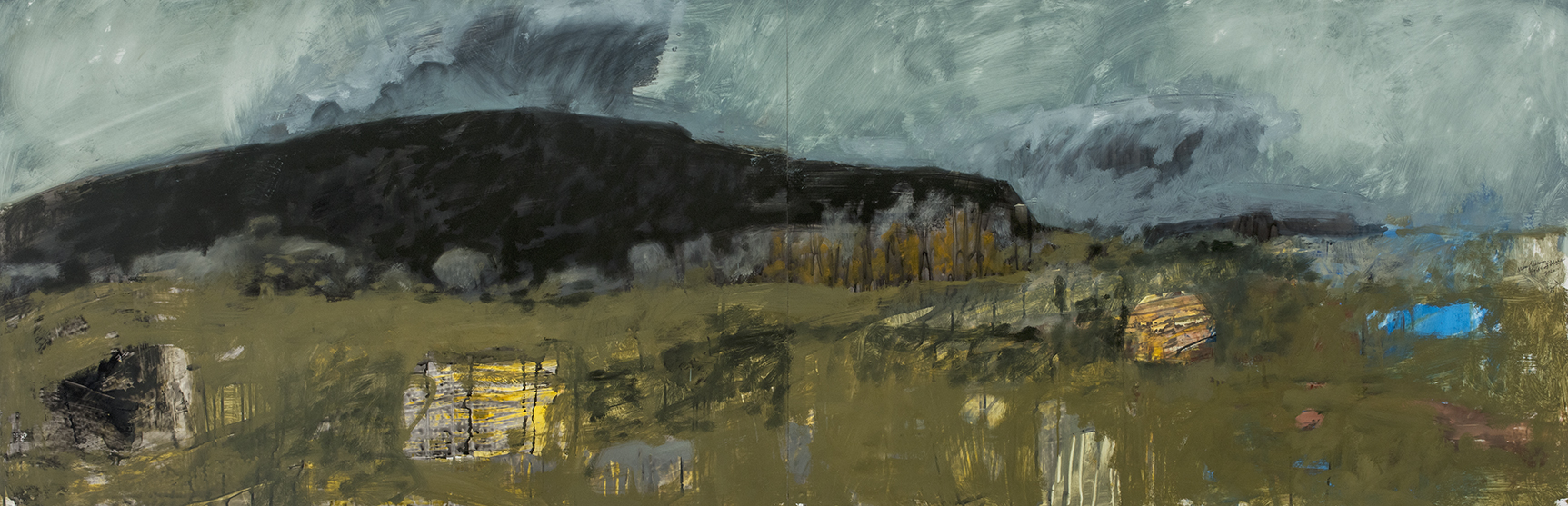 Fields at Mora, 2016, oil, ink and graphite on yupo, 26 x 80 inches