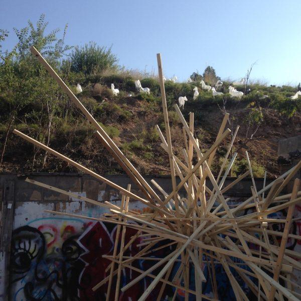 Foreground: Scotty Hensler, background (on hill): Efren Marrufo