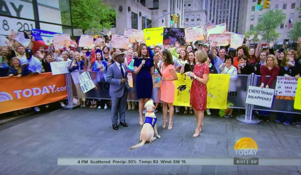 Still from Appearances on the Today show and Good Morning America, 2014-2017.