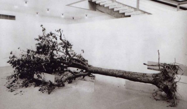 Robert Smithson's Dead Tree