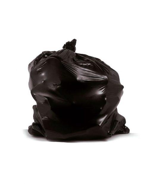 Chuck Ramirez, 'Trash Bag Series: Black Sack 1', 2001